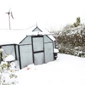 Sne drivhus