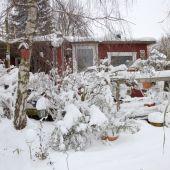 Sne kolonihavehus