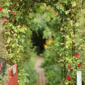 Indgang til haven