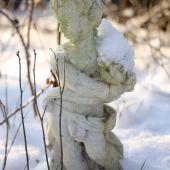 Figur med sne
