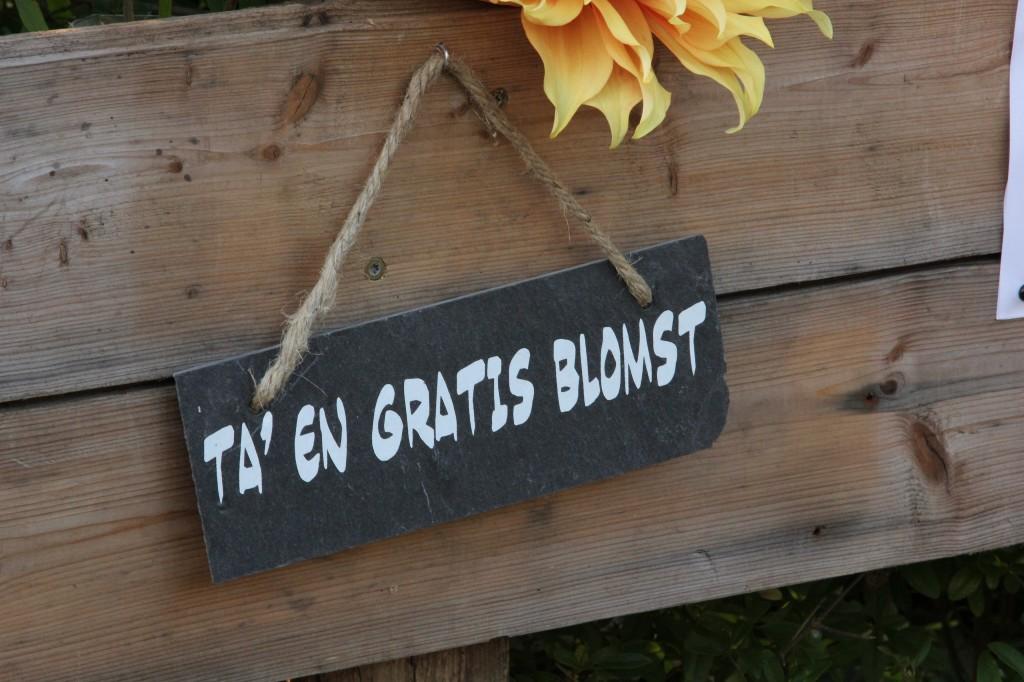 Gratis blomst