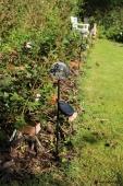 Solcelle lampe i rosenbed