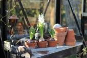 Lampe og blomster på plantebord
